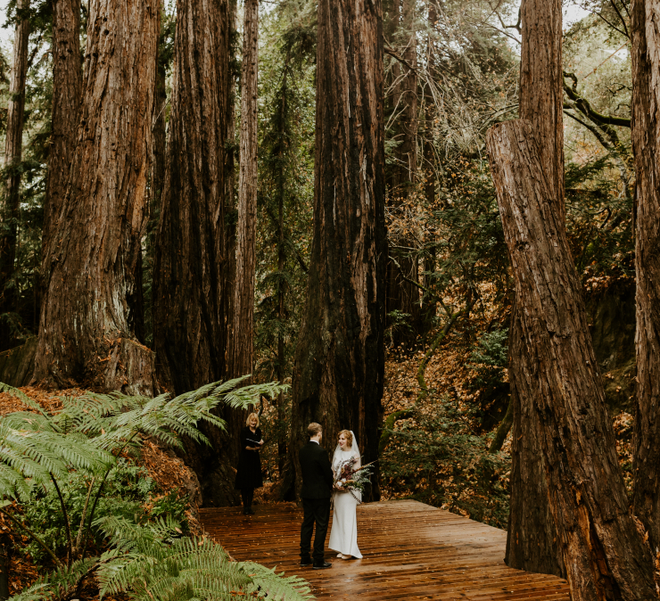 Kristi & Dom's Swoon-worthy Redwood Elopement at Carmel Redwood Cabins